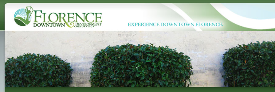 Florence Downtown Web Site Design